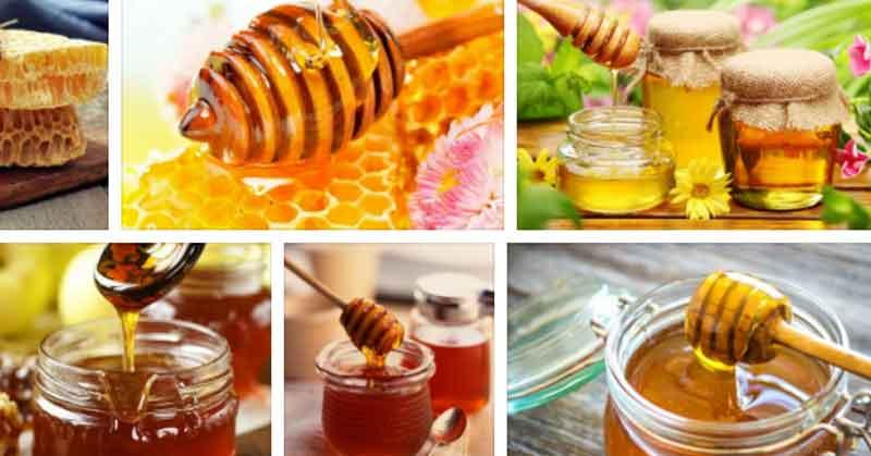 Пчелен мед при изгаряне, пъпки и др.